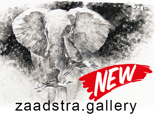 'Secure' https://zaadstra.gallery