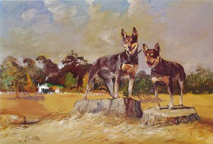 Two Farm Kelpies