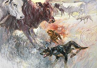 Kelpies Working Cattle